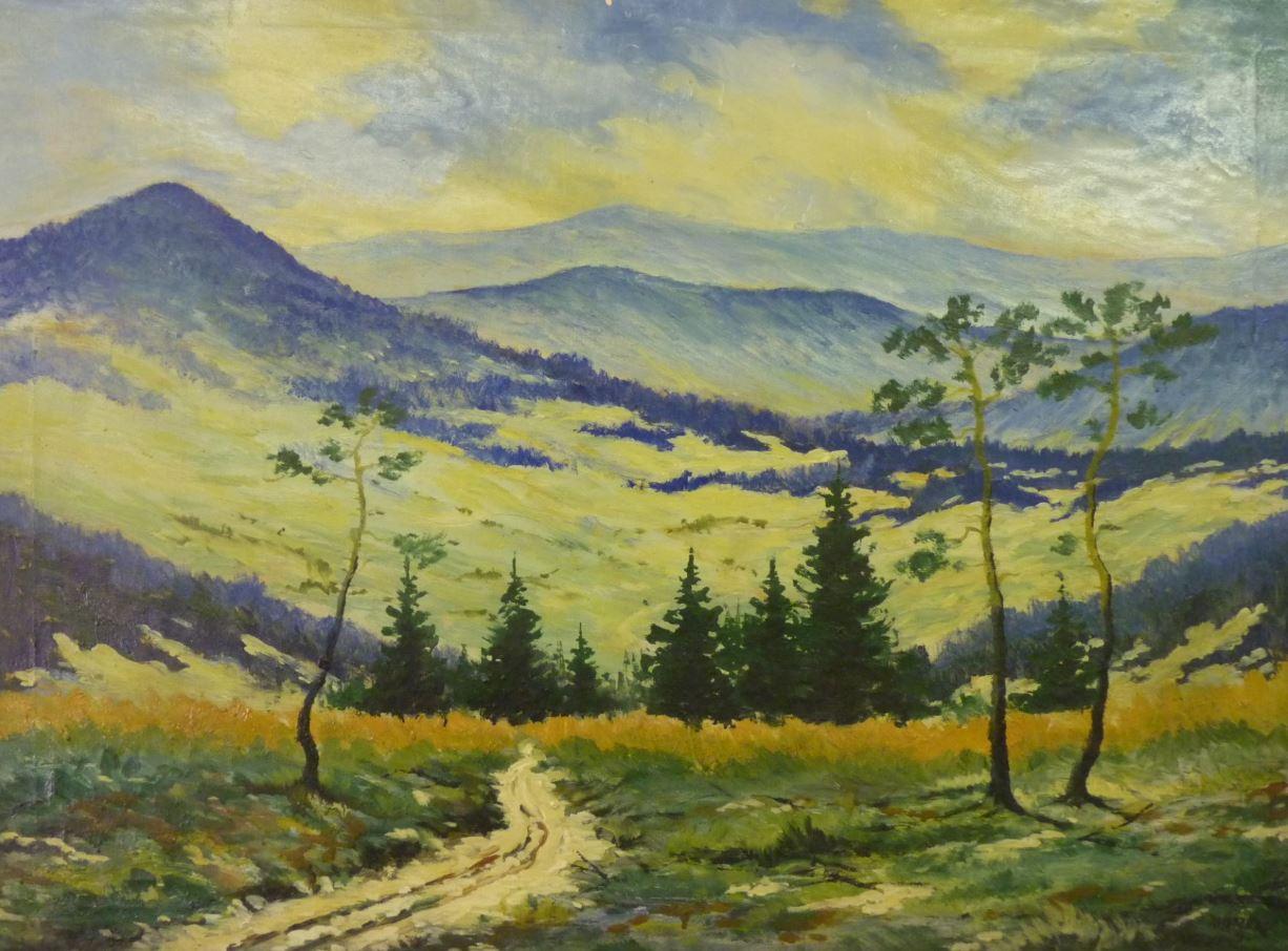 Pohled do údolí