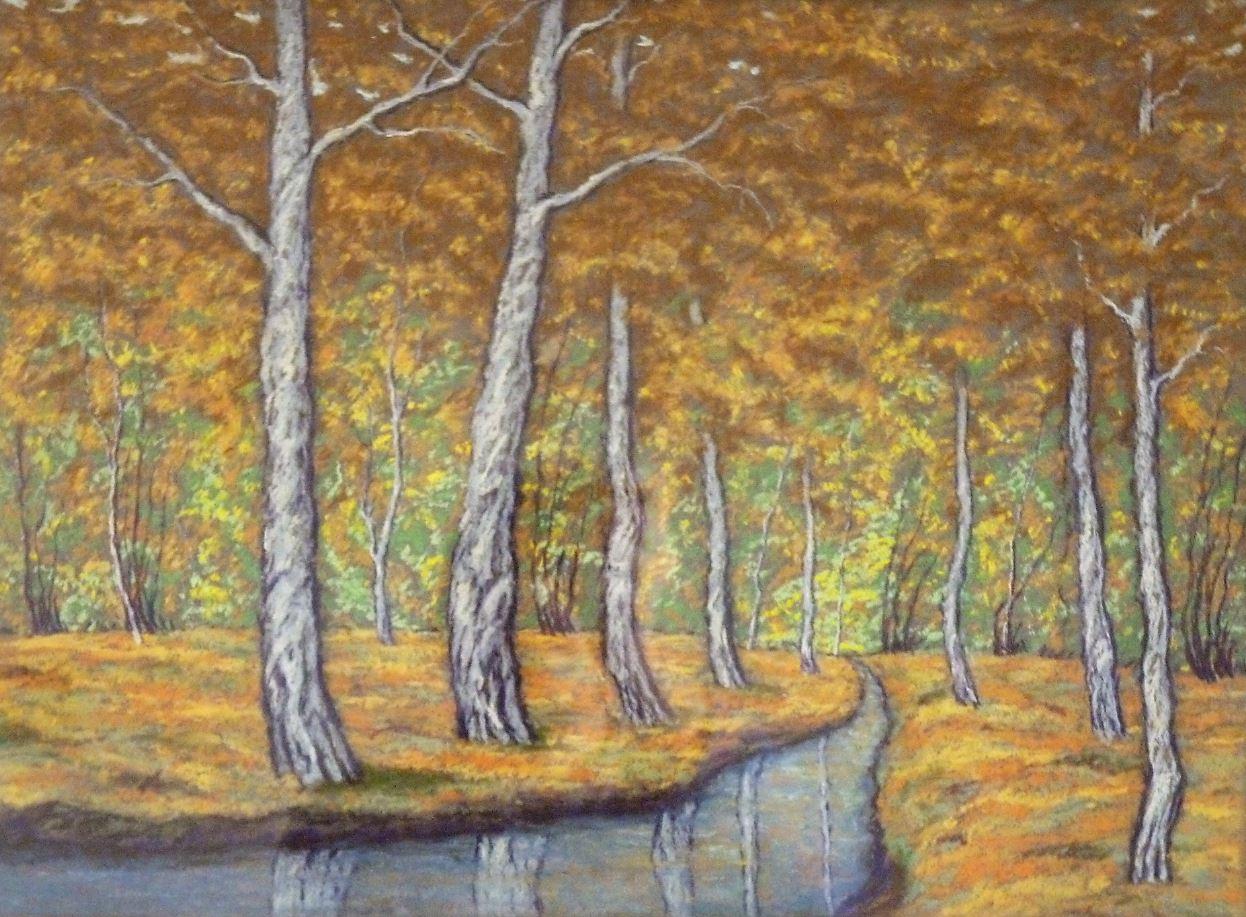 Lesní potůček