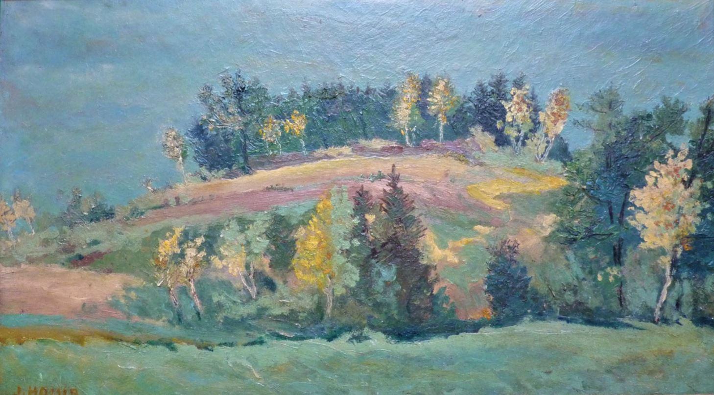 Lesík u Kralup